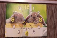 Часы на холсте, Братья кролики, в детскую